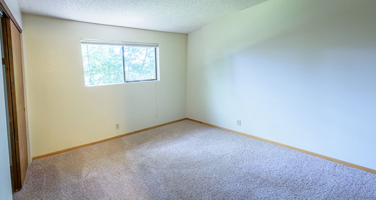 FIRs One Bedroom